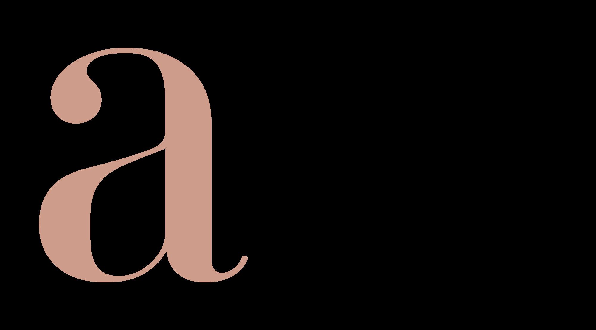 ANNAIDAM VISUALS -logo